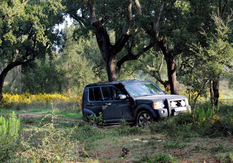 Land Rover Discovery 3 Experience